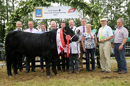 ALDI All Ireland Irish Angus Bull Finals 2017
