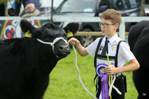 Irish Angus YDP 2019 season kicks off