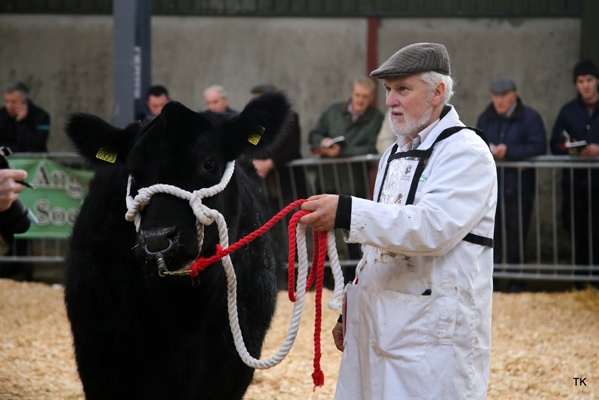 Premier Show and Sale Kilmallock 7th April Catalogue