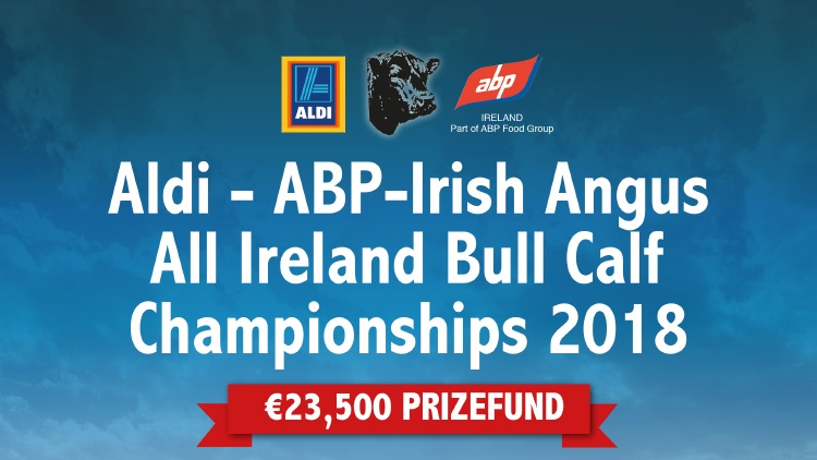 Aldi – ABP-Irish Angus All Ireland Bull Calf Championships 2018