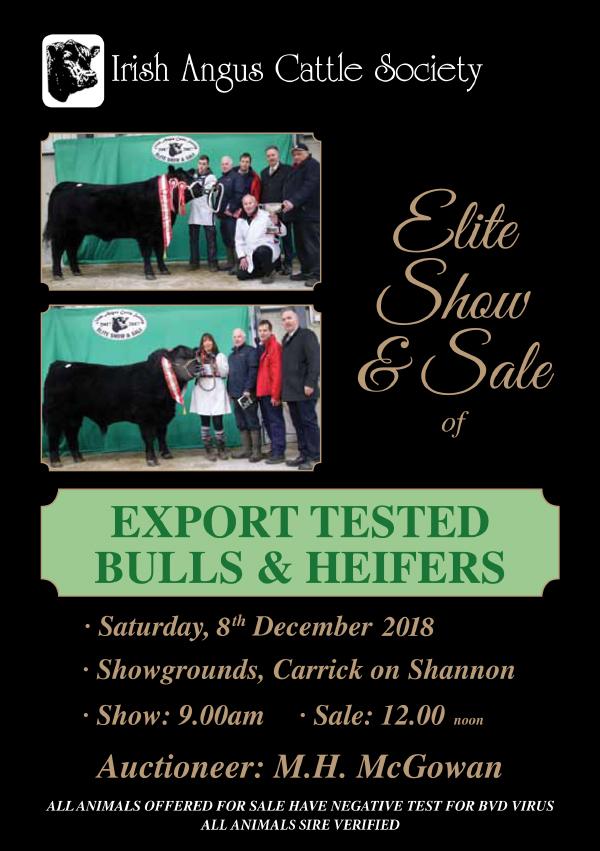 Irish Angus Elite Sale Catalogue