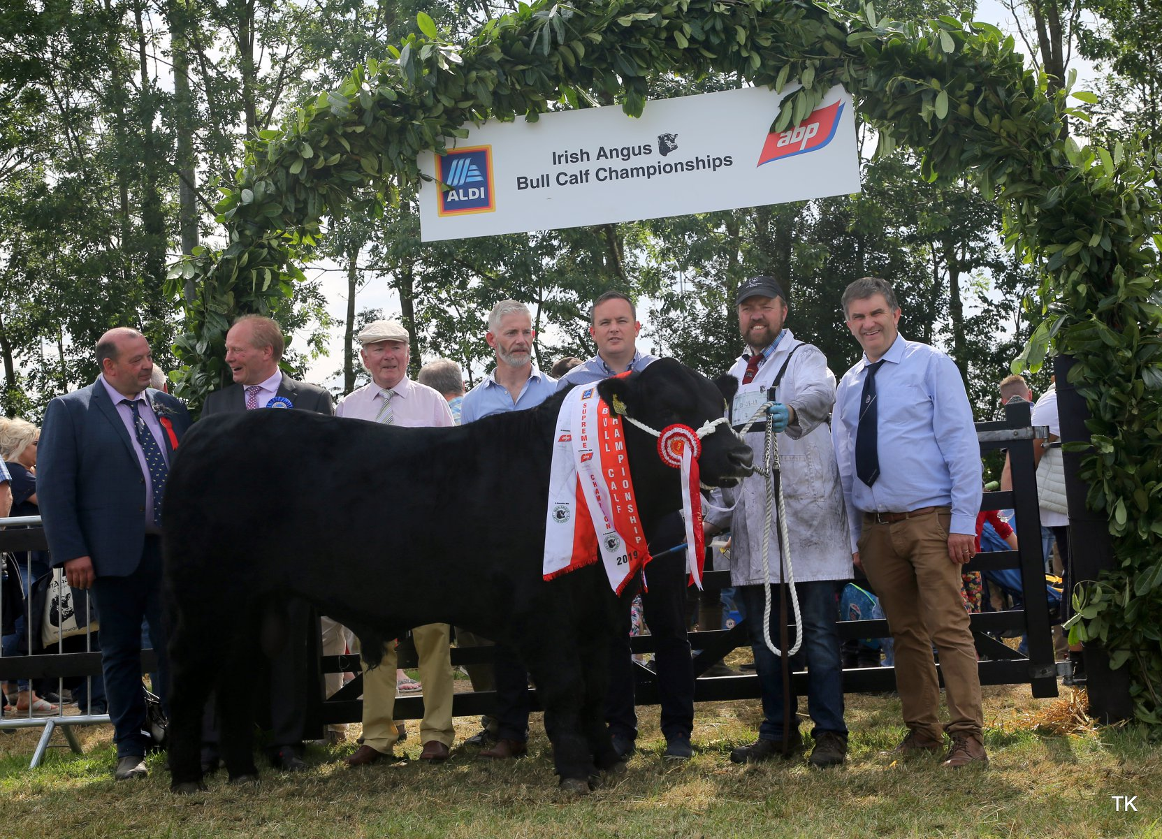 Aldi Irish Angus All Ireland Bull Calf Championship 2019