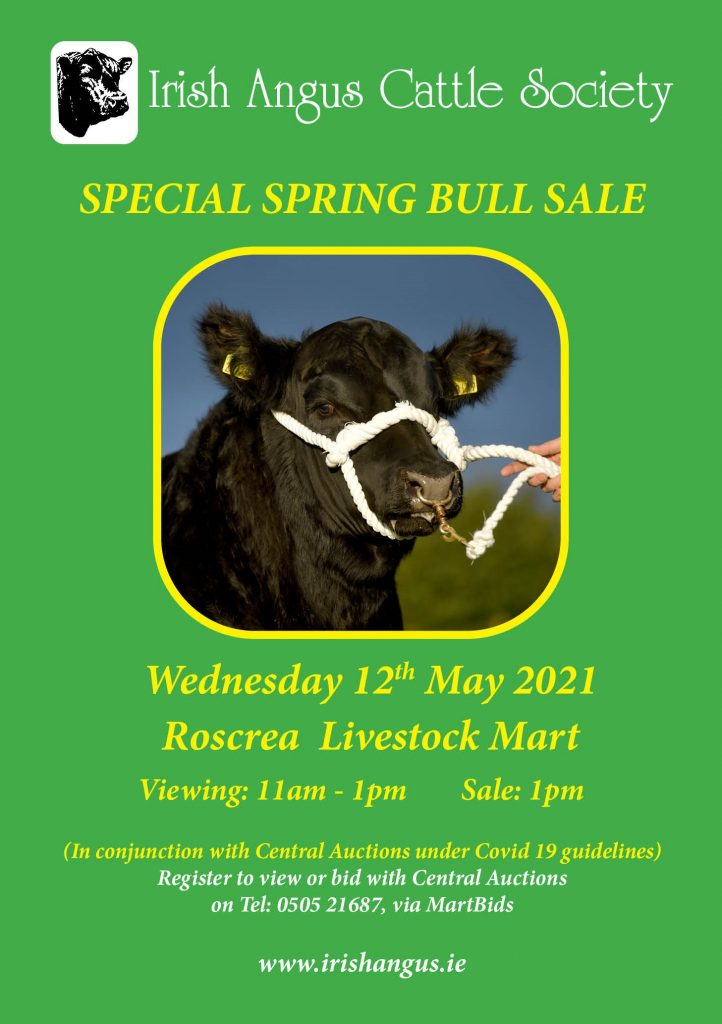 Roscrea Special Spring Bull Sale 12th May 2021