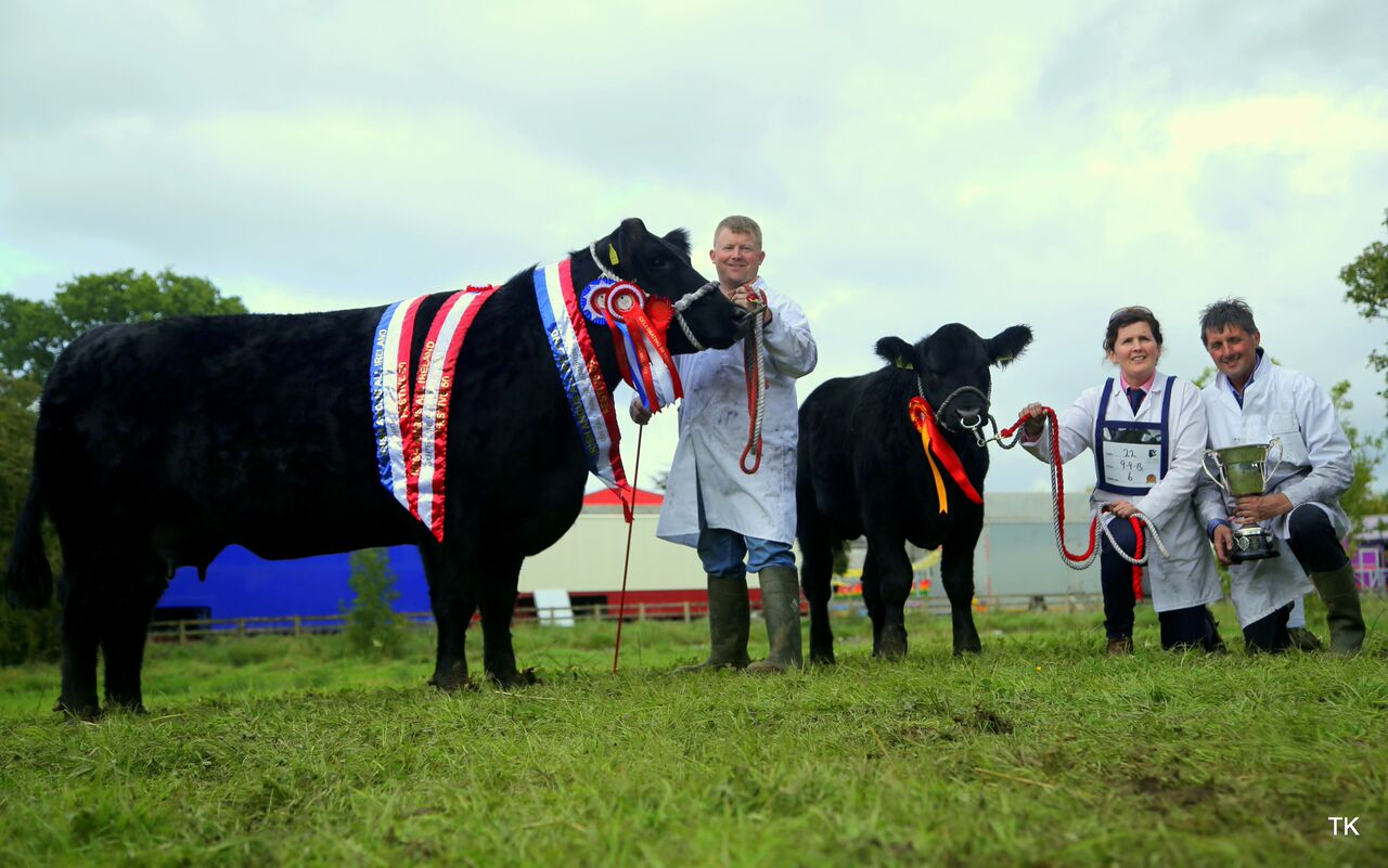 IRISH ANGUS CATTLE SOCIETY ALL IRELAND CHAMPIONSHIPS 2017