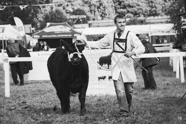 YDP Showmanship Awards – Strokestown Show