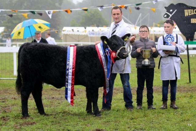IRISH ANGUS ALL IRELAND RESERVE SUPREME CHAMPION 2018 & Overall Junior Champion 2018 Bridgehouse Ria